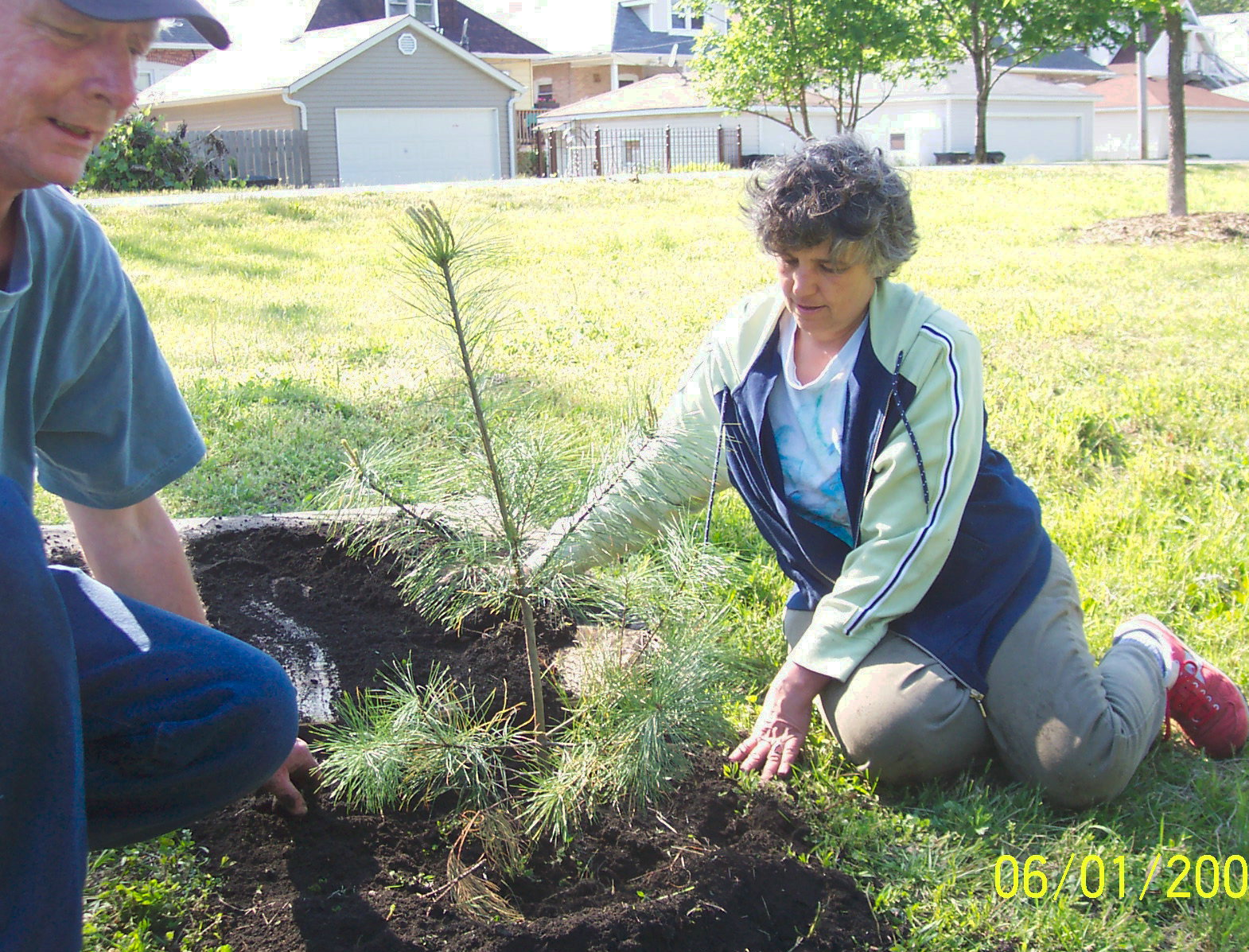 Planting Seedlings with Trees R Beautiful on Burnham Greenway